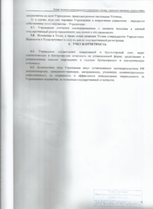 устав17.5